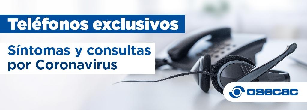 0800 exclusivo para consultas por coronavirus